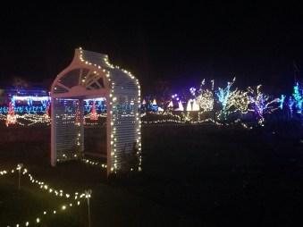 winter garden light 2