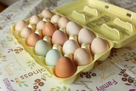 Virginia Eggs