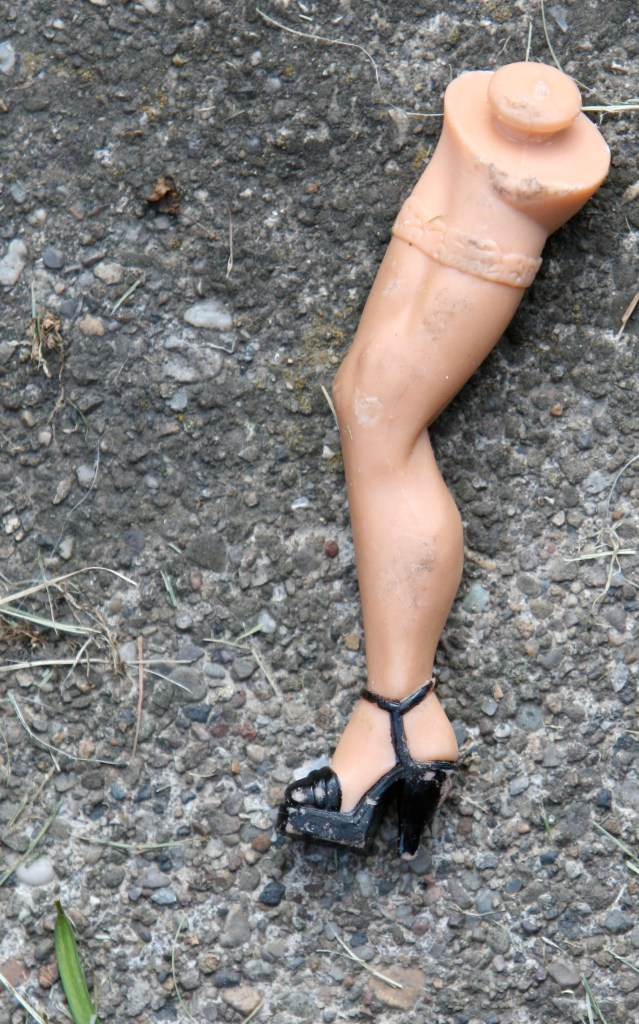 Who do you think this leg belonged to?