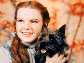 Judy Garland was once known as Frances Gumm from Rutherford County