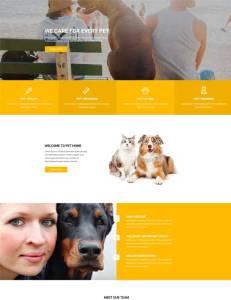 pet-care-home-500×650