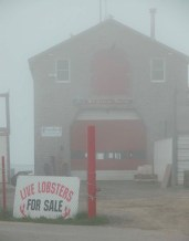 Port Clyde Maine in the fog