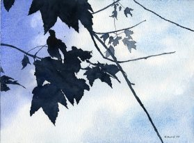 Waving Leaves against the Sky