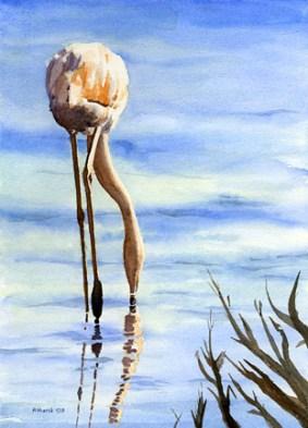 Flamingoing