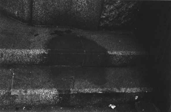 Hiroshima radiation shadow
