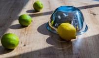 Citrus (1 of 3)