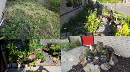Front Garden Project - how it began and 2 years after