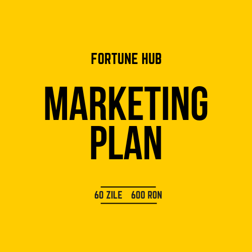 Ruxandra Babici_Fortune Hub_Marketing Plan