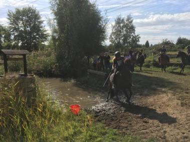 Reiterralley 2019 - 2