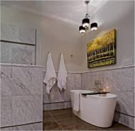 Case bathroom remodel6