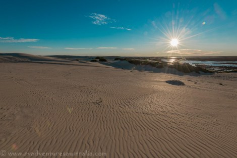Early evening in the dunes