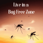 Preventing Bugs while RVing