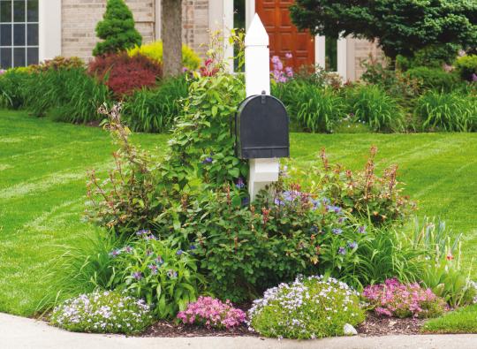 mailbox gardens create special