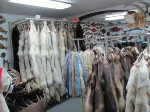 Pelts and animal skins on racks inside the Alaska Fur Exchange