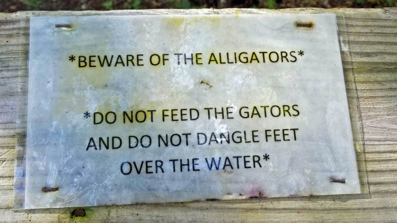 What part of 'Don't Feed the Alligators' needed to be clarified to include toes?