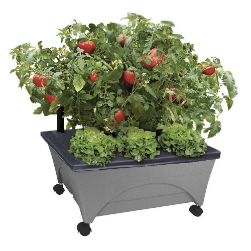 Home Depot City Pickers planter on wheels