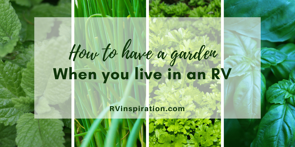 Living in a camper or motorhome doesn't mean you have to give up your love of gardening! Here are some ideas for growing herbs, vegetables, and other plants while living in an RV!
