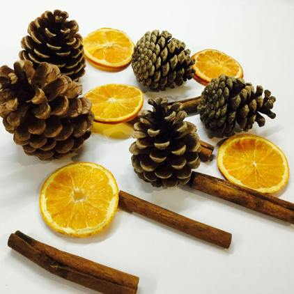 Pinecones, cinnamon sticks, and dried oranges from SweetWilliamsNorfolk Etsy store
