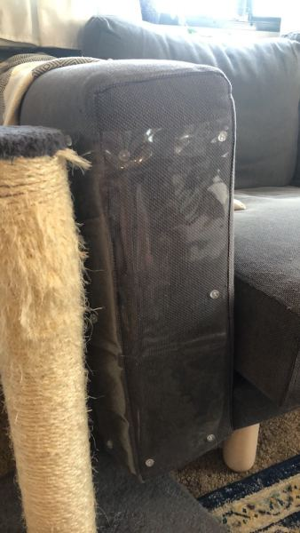 Cat scratching tower next to couch with vinyl cover