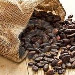 The Healthy Traveler: Cocoa versus Cacao: Does It Really Matter Which You Choose?