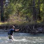 Fly-Fishing and Beer