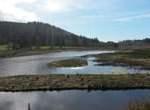 Oregon Parks to Buy Coastal Land