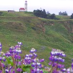 Celebrate National Lighthouse Day August 7