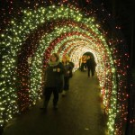 Celebrate Christmas at the Oregon Garden