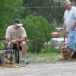Three Reasons Why Off-Leash Dogs in RV Parks are a Bad Idea