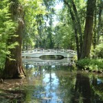 Plan Your Next Trip To Charleston, South Carolina
