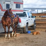 Take Your Horses On An Equestrian RV Trip