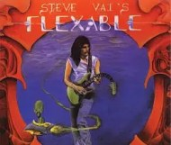 Steve Vai  - Flex-Able