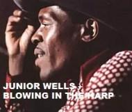 Junior Wells  - Blowing In The Harp
