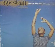 Me shell  Ndegeocello  - Peace Beyond Passion