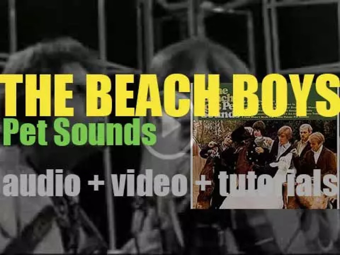 The Beach Boys release 'Pet Sounds' featuring 'God Only Knows' and 'Sloop John B' (1966)