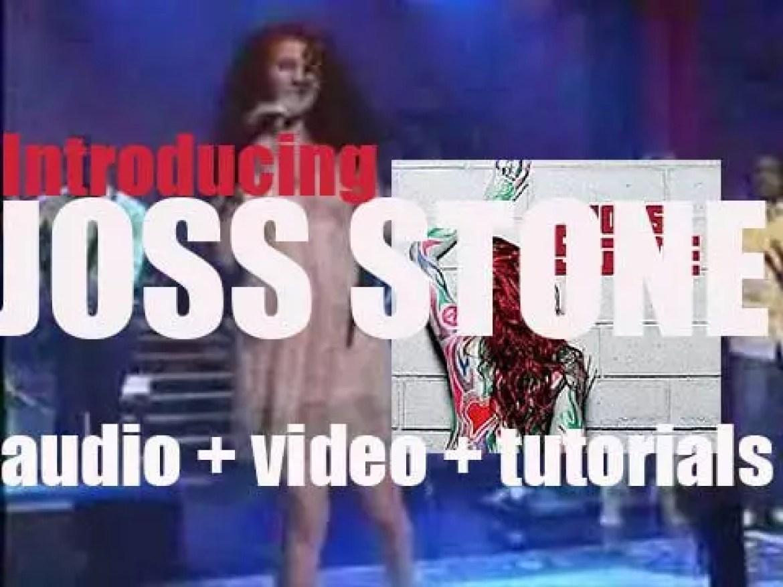 'Introducing Joss Stone' is her third album produced By Raphael Saadiq & Isaiah Abolin (2007)