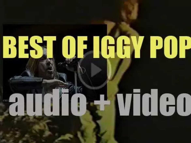 Happy Birthday Iggy Pop. 'Most For Life'