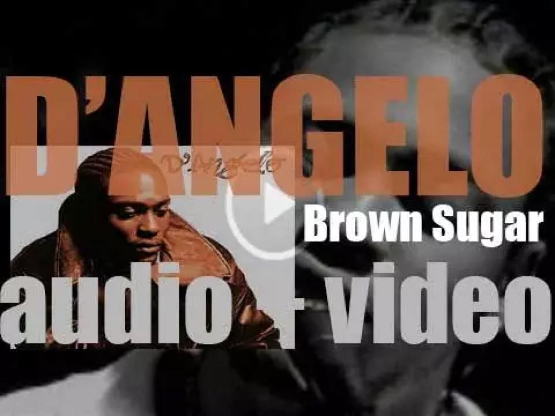 EMI publish D'Angelo's debut album : 'Brown Sugar' featuring 'Lady' (1995)