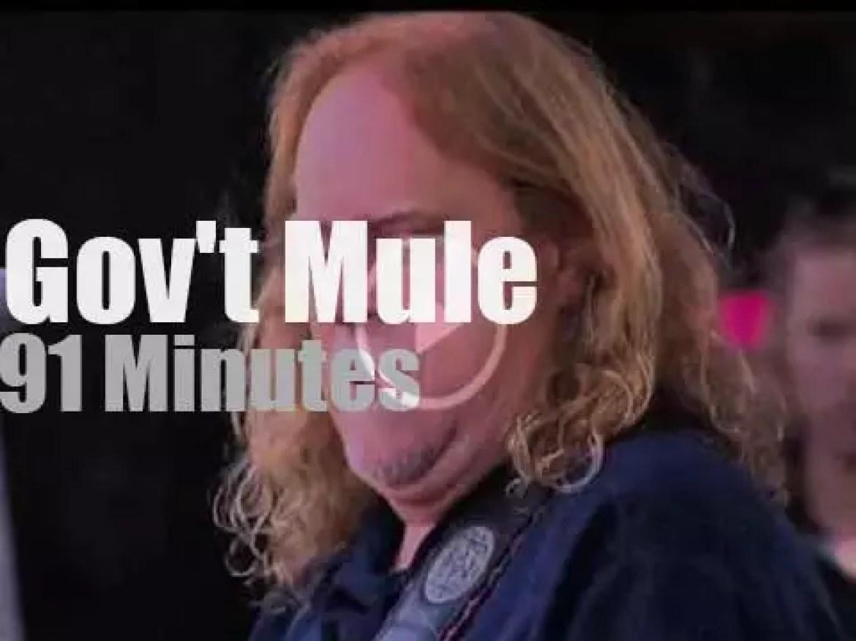 Gov't Mule performs at Lockn' Festival