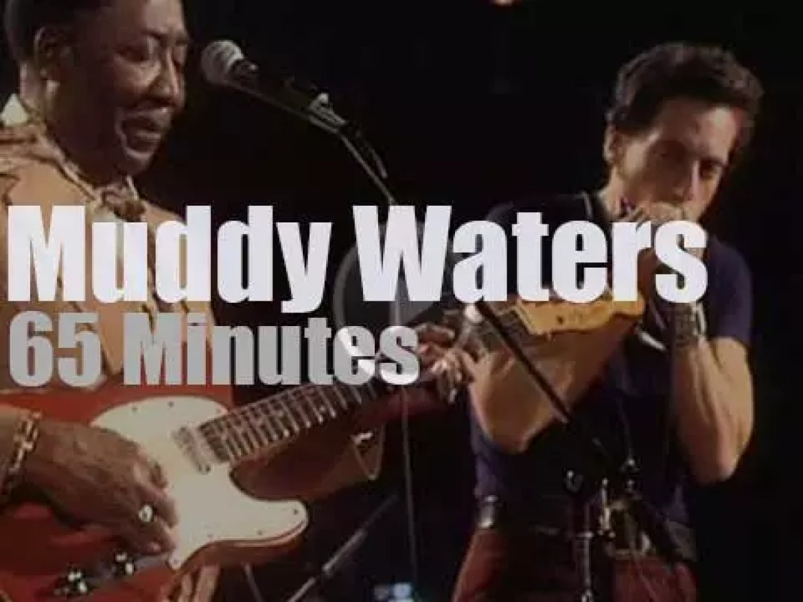 Junior Wells sits in with Muddy Waters (1976)