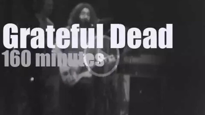 Grateful Dead occupy Winterland (1977)