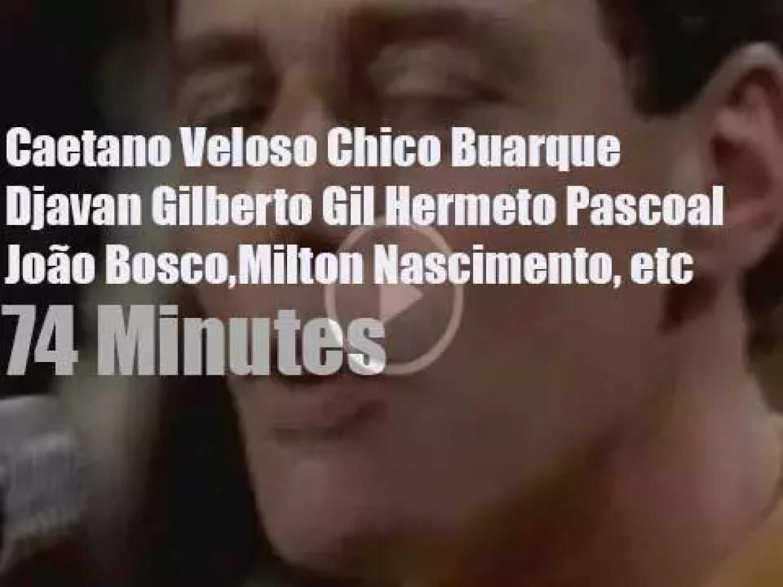 On TV today,  Caetano, Chico, Gilberto et al on TV Globo (1989)