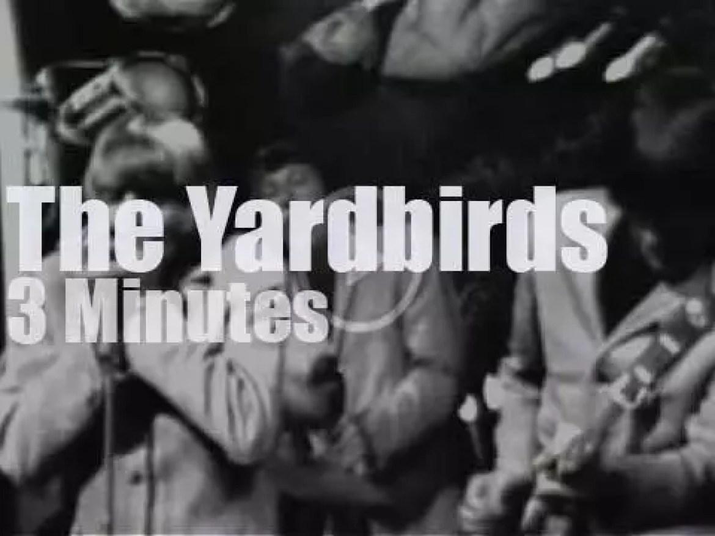 On TV today, the Yardbirds at 'Hullabaloo' (1965)