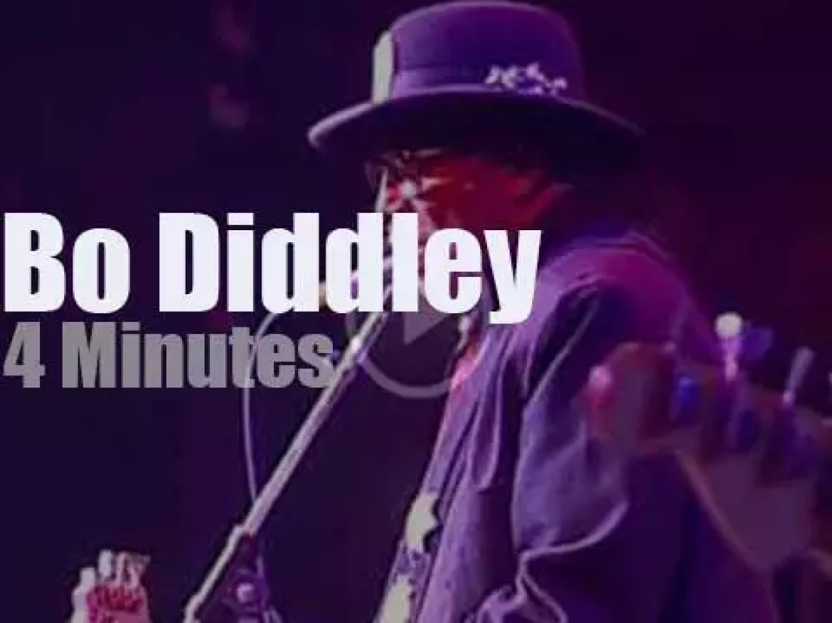 Bo Diddley plays (you guess it) 'Bo Diddley' (1999)
