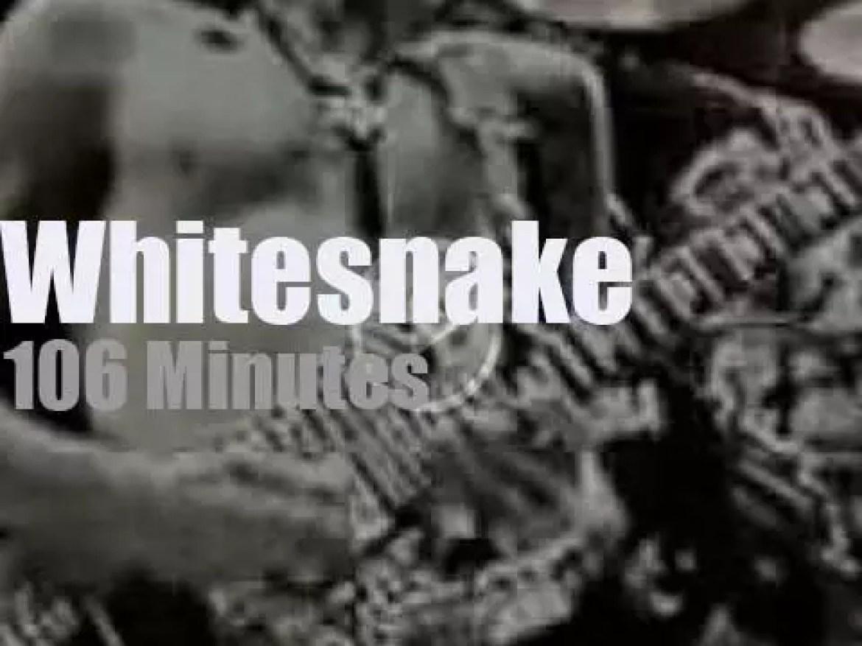 Whitesnake are 'Monsters of Rock' (1990)