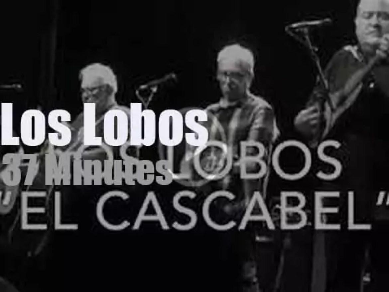 Los Lobos visit Santa Ana (2018)