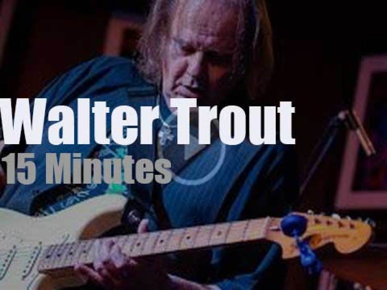 Walter Trout bluesifies Florida (2019)