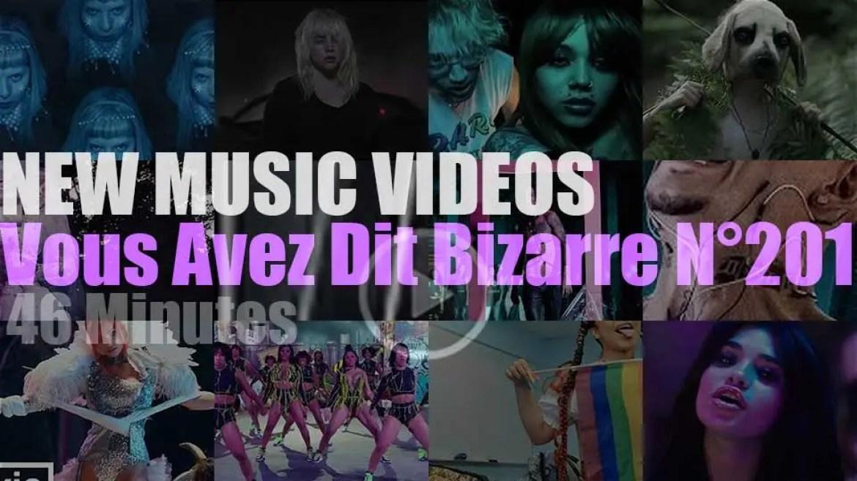 'Vous Avez Dit Bizarre'  N°201 – New Music Videos