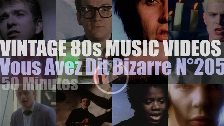 'Vous Avez Dit Bizarre'  N°205 – Vintage 80s Music Videos