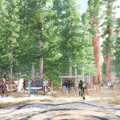Mariposa Grove of Giant Sequoias Set to Re-Open June 15